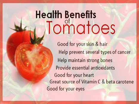 tomatoes___20140921095826___.png