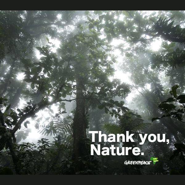 Nature___20140106064125___.jpg