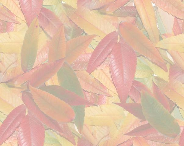 autumn-leaf-background-1-paper_25032018123849.jpg