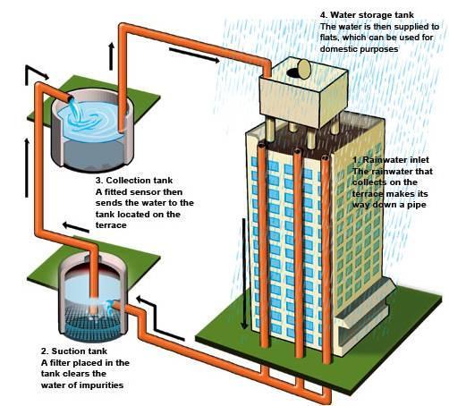 rainwater-harvesting_09092019082015.jpg
