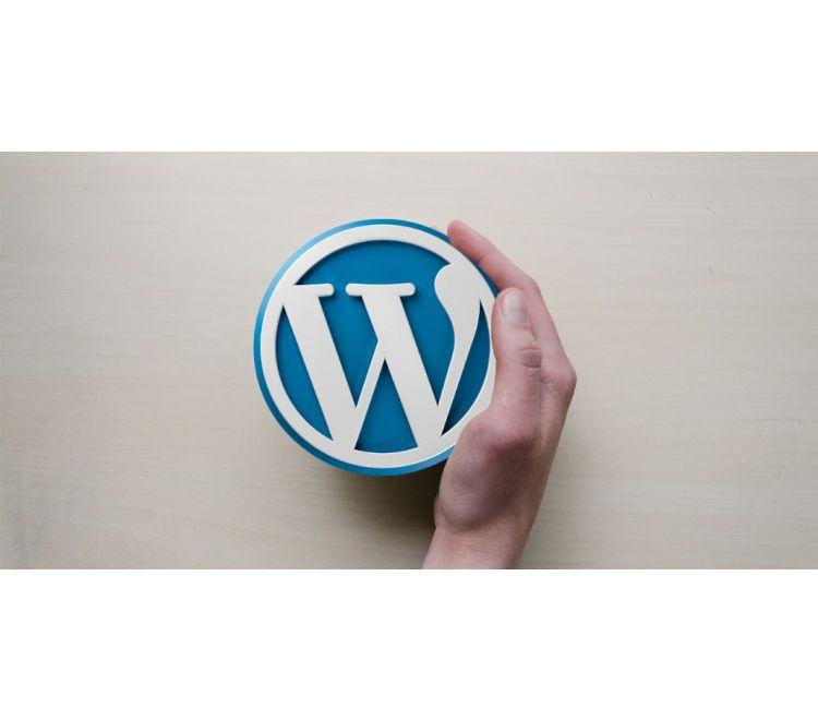 Thiết Kế Website WordPress Chuẩn SEO Trong 6 Giờ