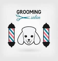 salon & pet grooming