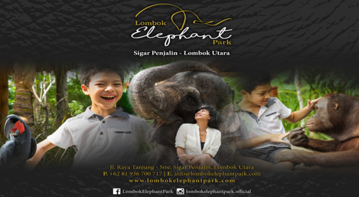 Lombok Elephant Park - Background