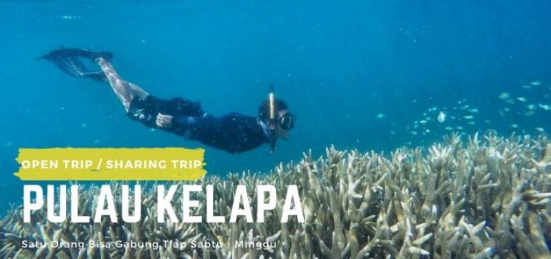 Open Trip Pulau Perak - Pulau Kelapa 2 Hari 1 Malam
