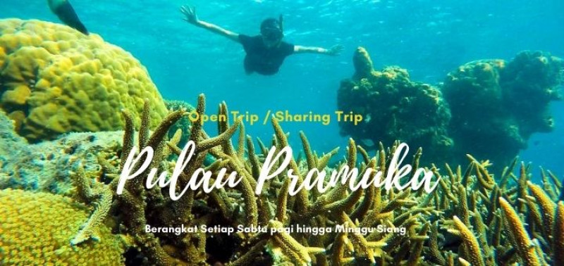 Open Trip Pulau Pramuka 2 Hari 1 Malam
