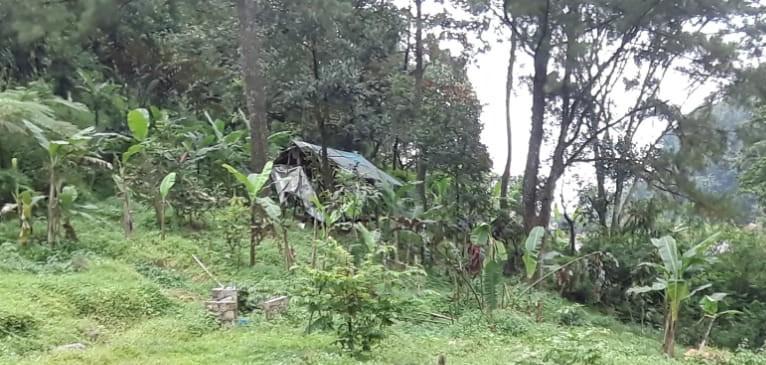 Pameran Tanah Murah dekat objek wisata Bogor