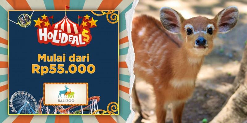 Bali Zoo Park - Domestic Tourist