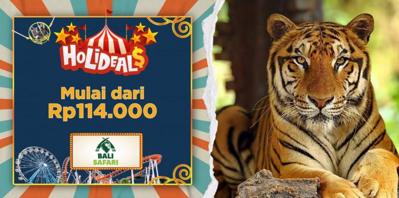 Bali Safari (Domestic Market)