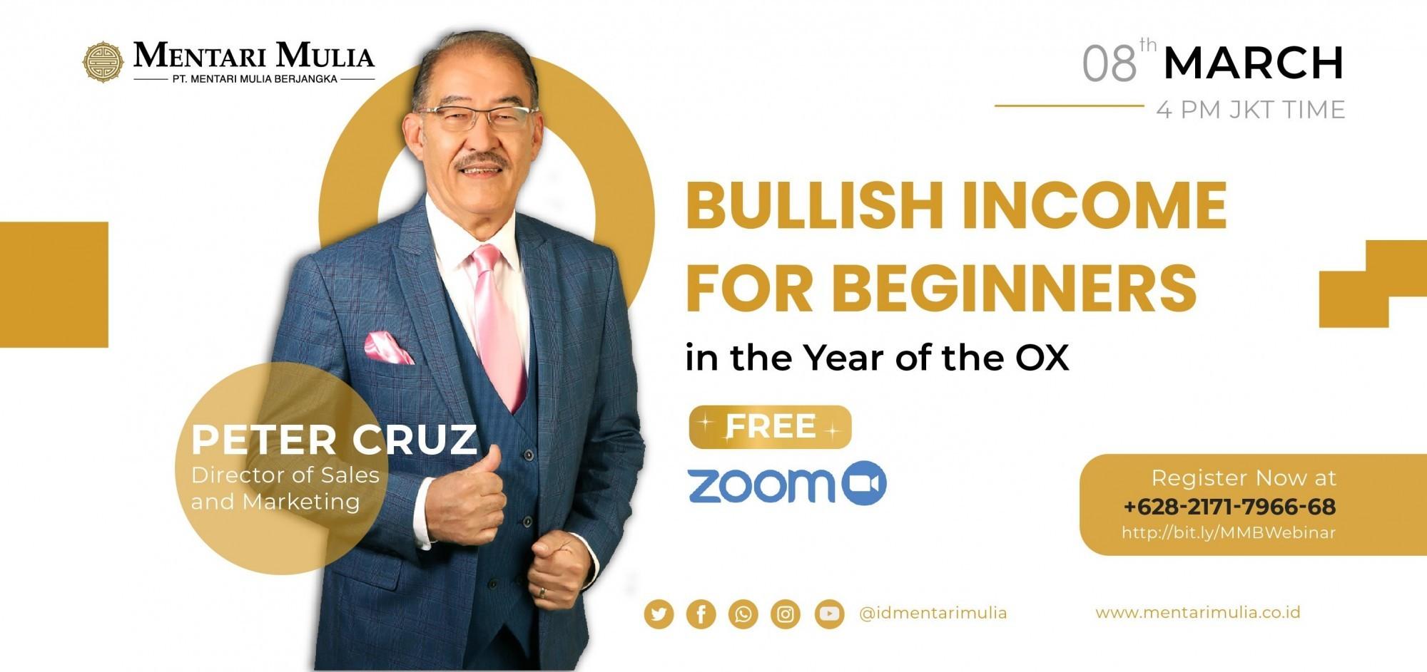 Bullish Income for Beginners