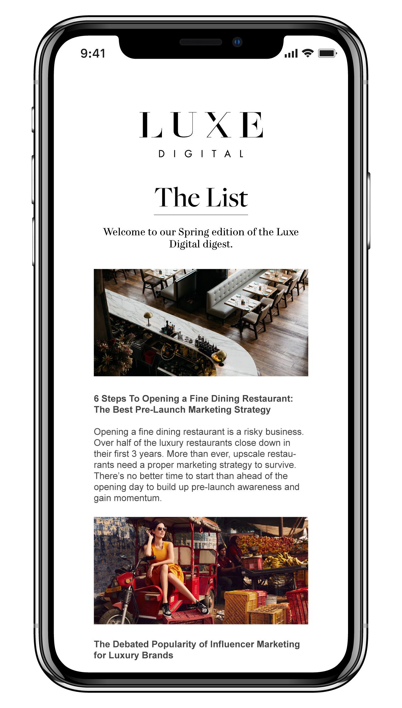 luxe digital luxury publication professional industry newsletter mockup