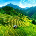 Luxury Travel To Vietnam