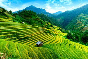 Vietnam Tour Guide Luxify