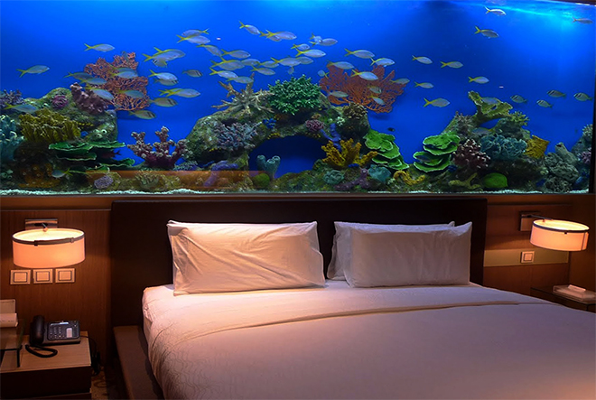 Aquarium walls are all the rage now according to 2017 luxury home trends and add to complete relaxation in addition to the home spa experience.