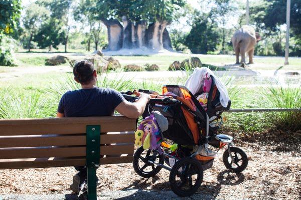 雖然帶著孩子要簡便出門很困難,不過最好還是依循嬰兒車正確使用方式