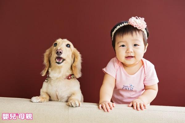 學齡前養寵物 須符合4條件