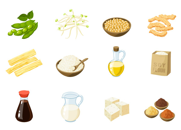 豆類食品包括許多營養素