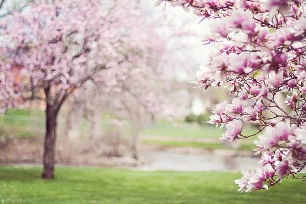 春分屬於揚發的季節,適合運動、早起,盡情做自己喜歡的事。
