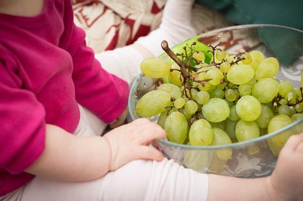 維生素C可減緩疲勞,建議以水果做為攝取來源