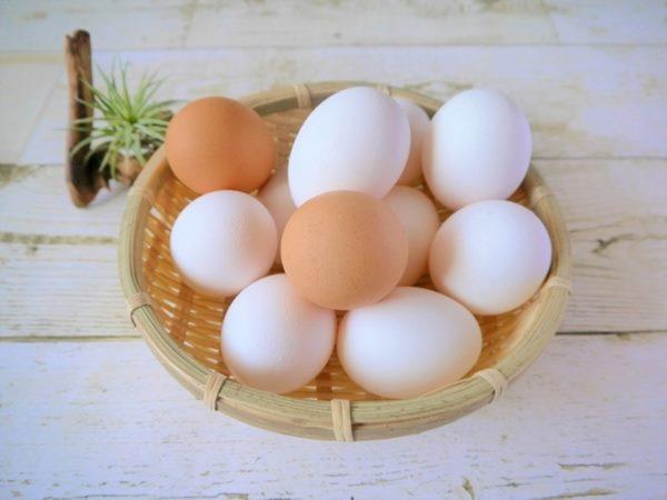 雞蛋對養肺很有幫助