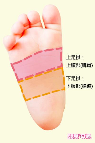 按摩寶寶足拱,上半部緩解消化不良、腸阻塞,下半部舒緩脹氣、便秘