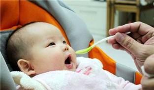 【新生兒報到】重要!寶寶邁入副食品階段之注意事項