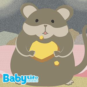 尾巴姊姊說故事:老鼠阿莫1