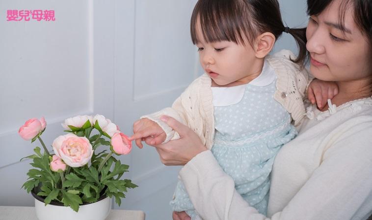 帶孩子種盆栽,竟可刺激五感發育,還能強化免疫力!