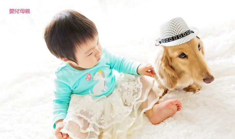 如何讓孩子與寵物安全互動?看動物行為治療師怎麼做!