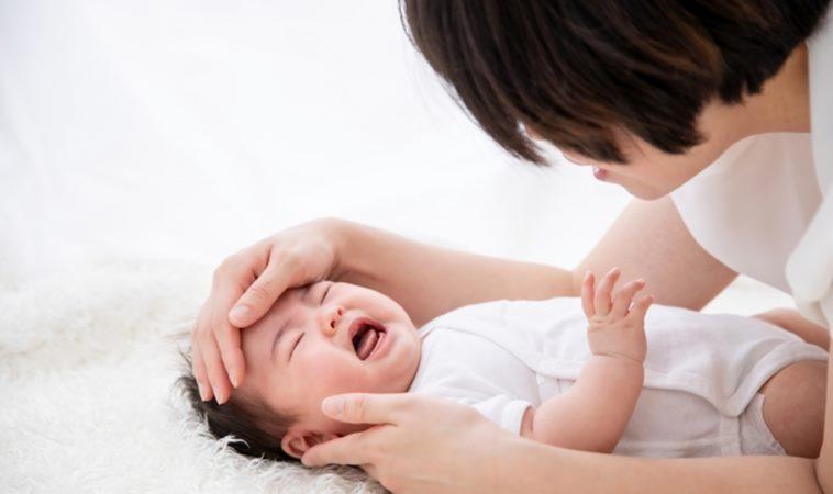 日本腦炎出現最小病例!確診3月大男嬰恐影響智力