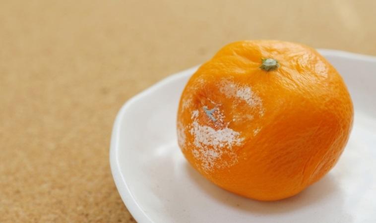 節儉成家卻賠了健康!年輕夫妻吃發霉水果雙雙得肝癌!