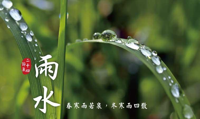 雨水養生,注重養脾胃、增強抵抗力!