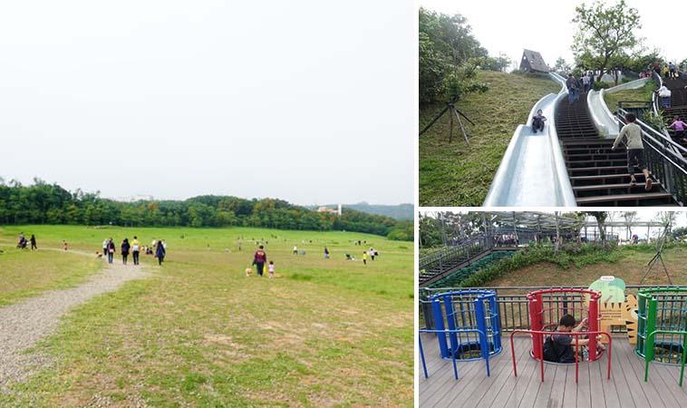假日野餐好去處,新竹青青草原