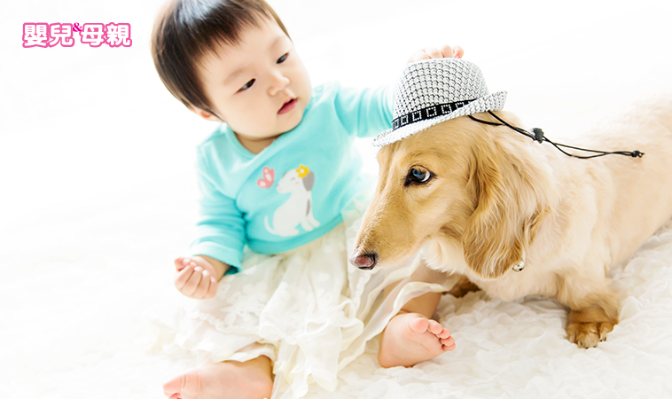 起疹子、眼睛發癢… 寶寶過敏 毛小孩惹的禍?