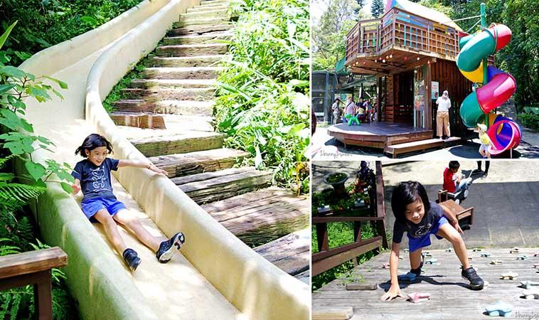 新竹親子超夯景點,森林鳥花園