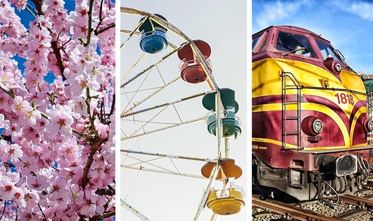 228連假上哪兒去?來趟賞櫻、樂園、鐵道之旅