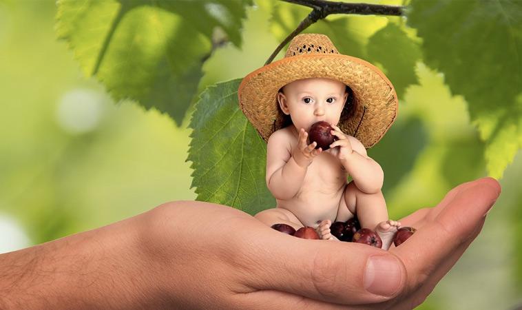 幫助早產兒順利長大!
