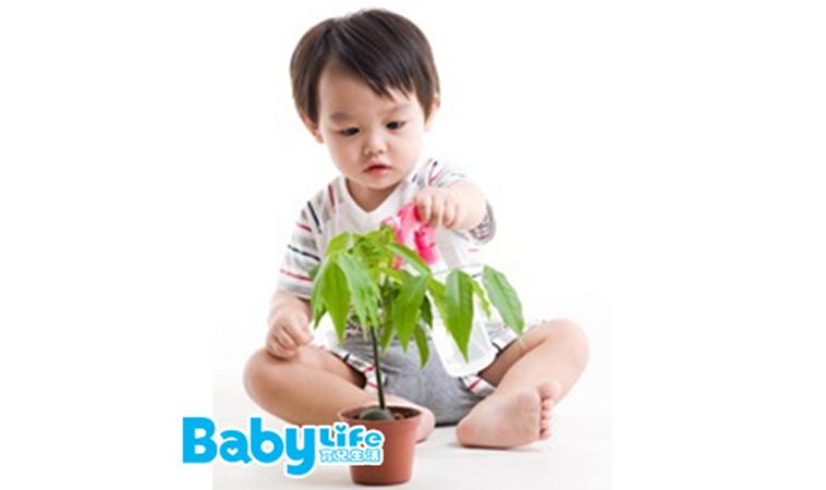 0~3歲寶寶腦發育