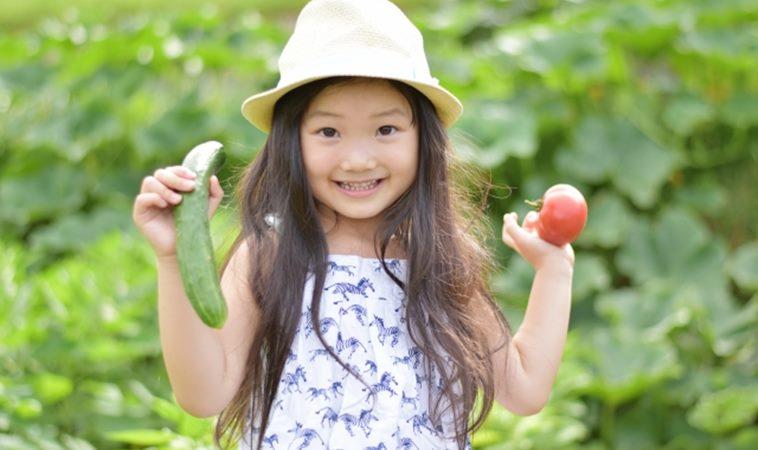 疫情當前,家中常備17種蔬果免疫力不下降