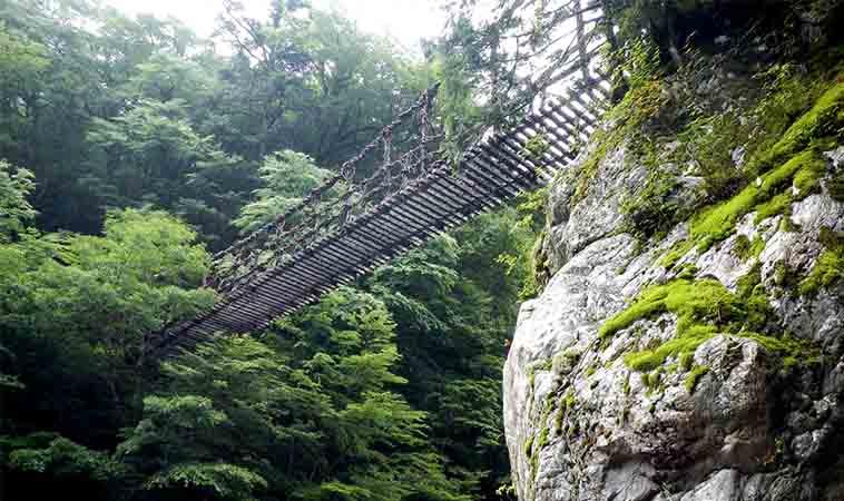 2歲男童墜落吊橋,別輕視嬰幼兒外出安全