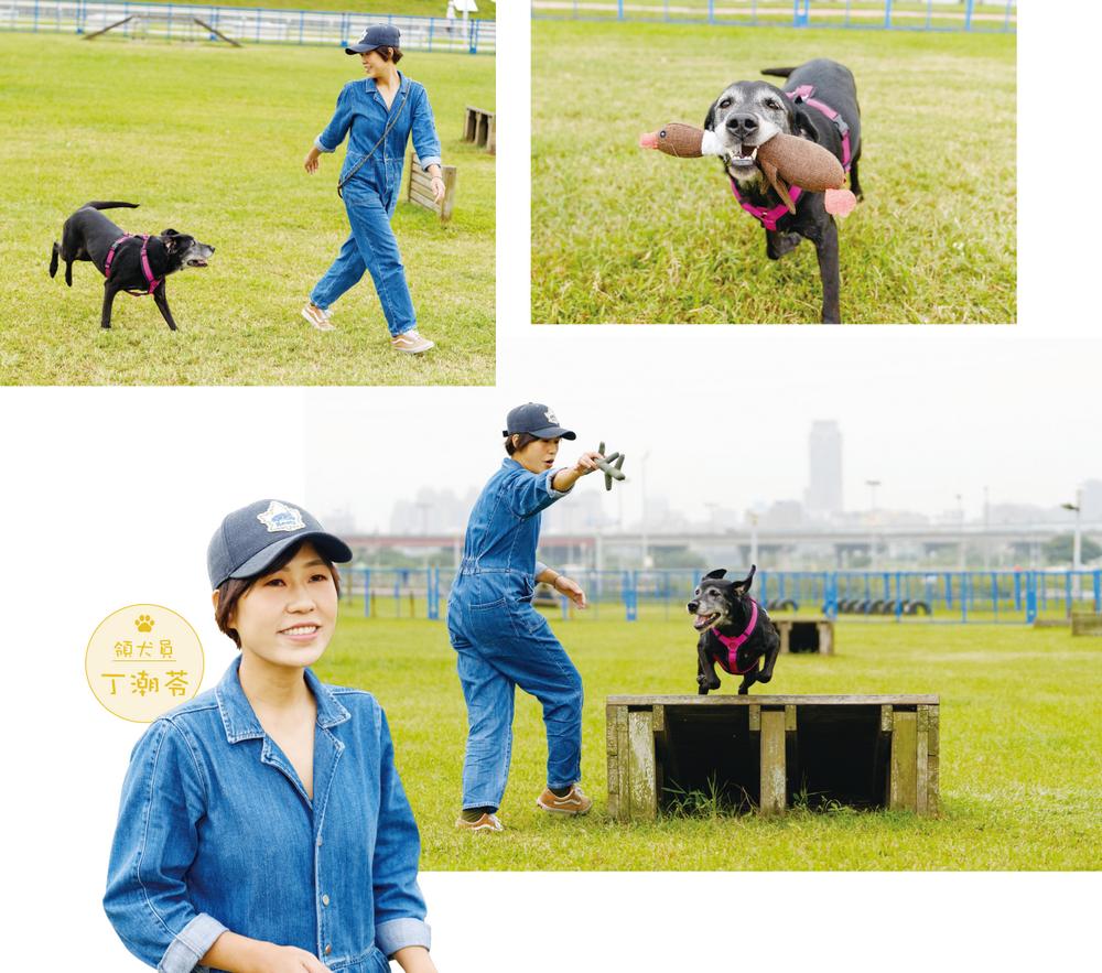 退休「狗」日子    檢疫犬迎向全新篇章