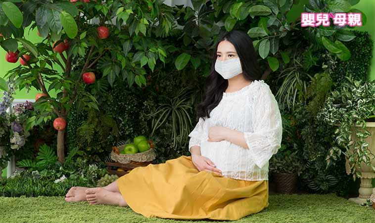 孕期預防登革熱,更應加強環境清潔