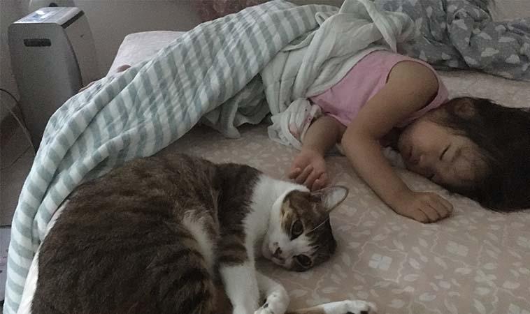 有一種魔幻時刻,叫做「孩子睡著後」