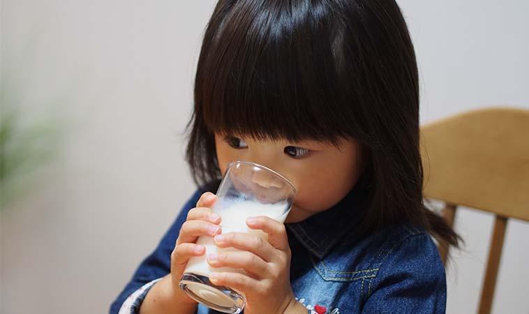 研究:幼兒喝全脂牛奶,將來肥胖機率低