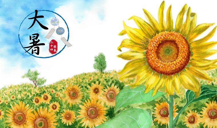 「大暑」自然陽氣旺養身體的陽,夏日養生3重點