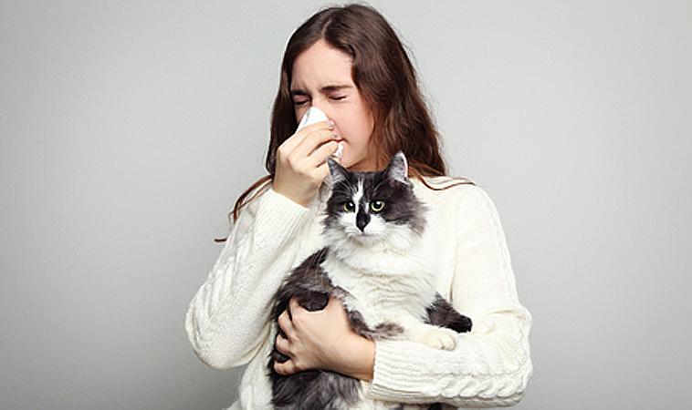 過敏,又想養寵物怎麼辦?