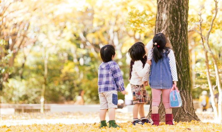 秋天易傷感,你也有「季節性情緒障礙」嗎?3招教你解秋愁