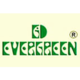 Evergreen Sweet Shop, Dwarka, New Delhi, logo - Magicpin