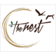 The Nest, Aurobindo Marg, New Delhi, logo - Magicpin