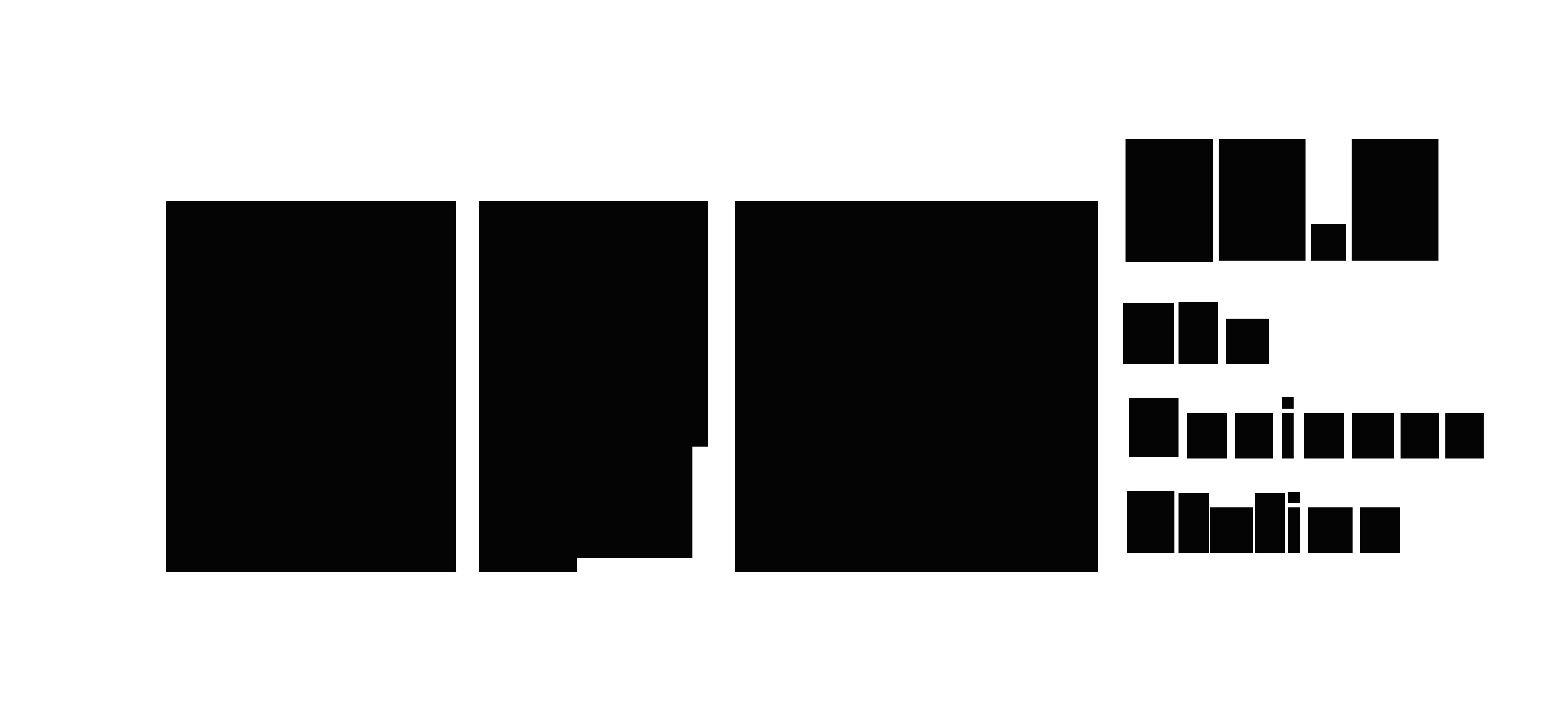 BFM Logo