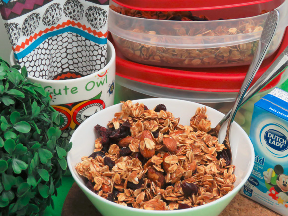 Healthy Snacks Malaysia Almond Pecan Honey Granola Snacks